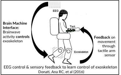 EEG cobtrol & width=