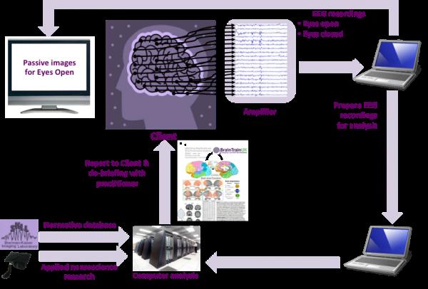 Advanced QEEG in Mapping (AQBM) | inTrainUK on